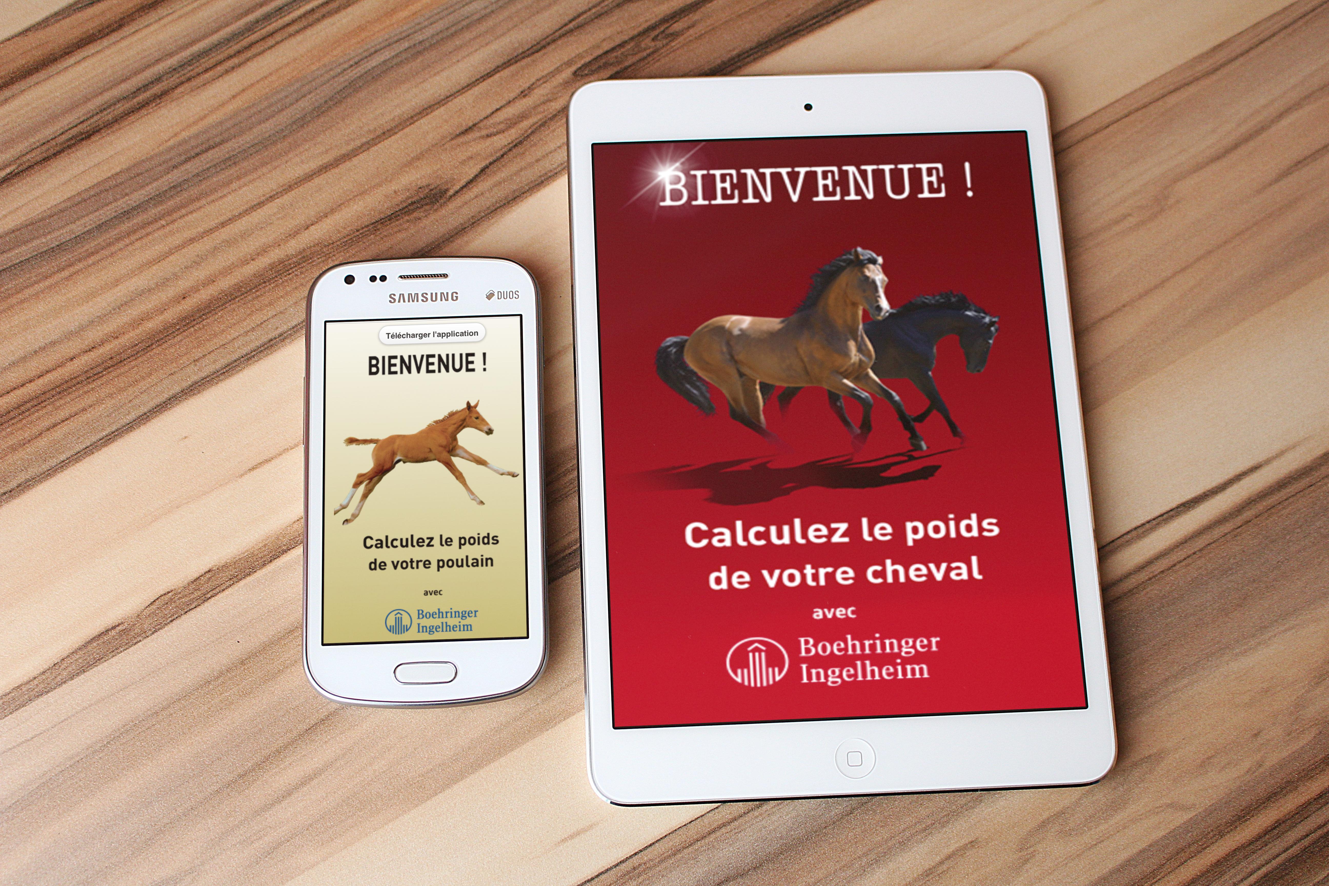 Application - Poids poulain et cheval